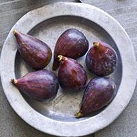 figs-plate.jpg